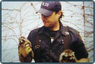 Pest Control NJ | Animal Control NJ - 2