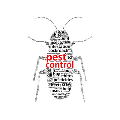 Bug Control in Hunterdon County, NJ Image